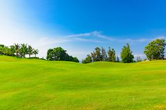 Well-groomed field lawn green grass playing golf. Well-groomed field lawn green grass for playing golf stock photography