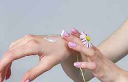 Well-groomed hands of a young woman. Stock Photography