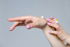 Well-groomed hands of a young woman. Royalty Free Stock Photos