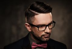 Well-groomed stylish young man with bow tie posing on dark  background. Royalty Free Stock Photography
