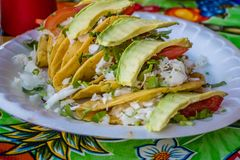 A delicious tacos in Nuevo Progreso, Mexico. A well known traditional Mexican dish contains wheat tortilla in Nuevo Progeso royalty free stock photos
