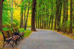 Well maintained city park with benches. And lanterns royalty free stock photos