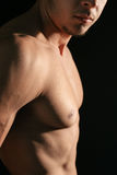 Well shaped chest Royalty Free Stock Image