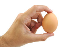 Well shaped man's hand with an egg isolated a on Royalty Free Stock Photos