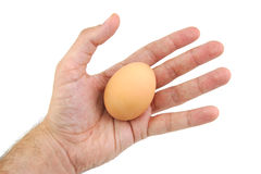 Well shaped man's hand with an egg isolated a on Royalty Free Stock Photography