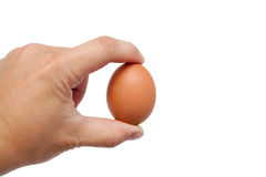 Well shaped men's hand with an egg Royalty Free Stock Photos