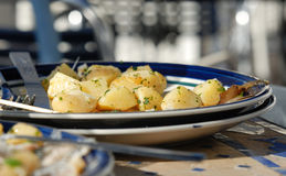Well spiced roasted potato slices Stock Images