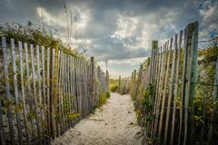 A Well-Travelled Footpath to the Sea. A well travelled footpath through the dunes leads to the ocean Royalty Free Stock Photography