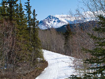 Well used winter trail in Yukon mountains, Canada Stock Image
