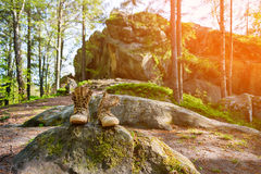 Well-worn hiking boots, unlaced and muddy on the forest floor. Tourism concept. Stock Images