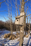 Well worned birdhouse in the bush Royalty Free Stock Image