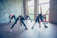 Wellbeing, stretching and health concept. Five pretty young slim. Ladies are training at modern studio, wearing fashionable sport wear, sneakers Royalty Free Stock Photo