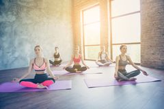 Wellbeing, wellness, vitality, peace lifestyle. Five young calm. Women are practicing yoga in the lotus position in modern studio on purple mats Stock Image