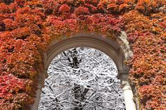 When autumn turns in to the the winter  Stock Photo