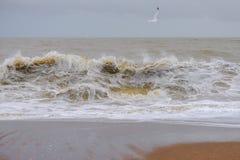 Welle auf dem Strand stockfotos