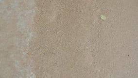 Welle auf freiem Sandstrand stock video footage