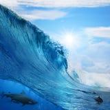 Welle bricht Delphine und Haifisch Stockfoto
