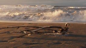 Welle, die Zeitlupe 60fps einläuft stock video