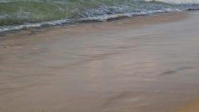 Welle wäscht wegabdrücke im Sand stock video
