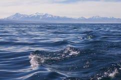 Wellen auf dem Gebirgssee Lizenzfreies Stockfoto