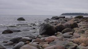 Wellen auf dem See stock video