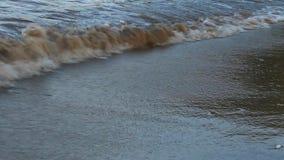 Wellen auf dem Strand stock video