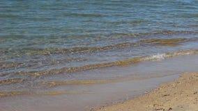 Wellen auf einem Strand stock video