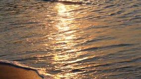 Wellen auf Ufer stock footage