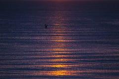 Wellen bei Sonnenuntergang Stockfoto