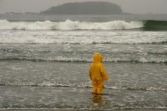 Wellen-Beobachter Stockbild