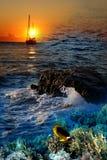 Wellen des Meeres Lizenzfreies Stockfoto