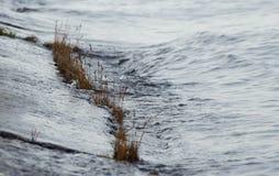 Wellen des Meeres Lizenzfreies Stockbild