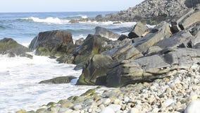 Wellen des Pazifischen Ozeans spritzen auf Felsen Baja California Sur, Mexiko stock footage