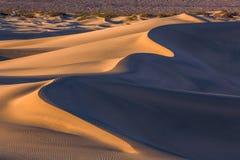 Wellen des Sandes auf die Dünen SONNENAUFGANG Wüste in Süßhülsenbaum F Lizenzfreie Stockfotos