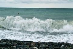 Wellen des wogenden Sees, die Strand zerschmettern stockfotos