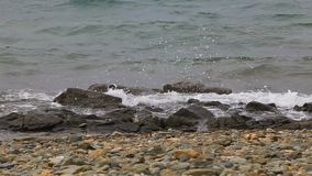 Wellen, die auf dem Ufer zerquetschen stock footage