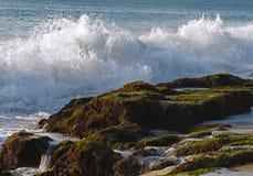 Wellen, die auf den Felsen abbrechen Stockfotografie