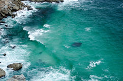 Wellen, die auf Felsen zusammenstoßen Lizenzfreie Stockfotos