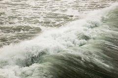 Wellen, die im Pazifik zusammenstoßen lizenzfreies stockbild