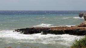 Wellen h?llen das Ufer ein stock video footage