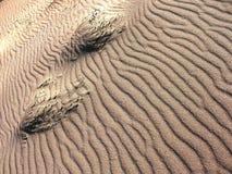 Wellen im Sand. Stockfotografie