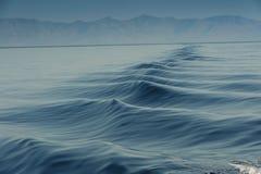 Wellen im Wasser Stockfoto