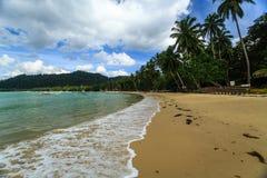 Wellen stoßen auf dem Kurven des tropischen Strandes zusammen, der mit Palmen gezeichnet wird stockfotografie