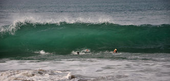 Wellen- und Tauchensfüße Stockfotografie