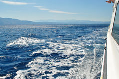 Wellen von einer Yacht Stockbilder