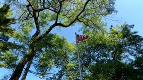 Wellenartig bewegende Ansicht von unten der amerikanischen Flagge stock footage