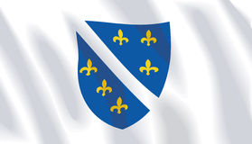 Wellenartig bewegende Markierungsfahne von Bosnien-Herzegowina lizenzfreie abbildung
