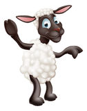 Wellenartig bewegende und zeigende Schafe Stockbild