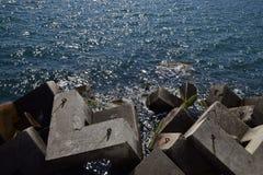 Wellenbrecher der rechteckigen Steinzahlen Lizenzfreie Stockfotografie