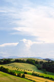 Wellenförmige Hügel Lizenzfreies Stockbild